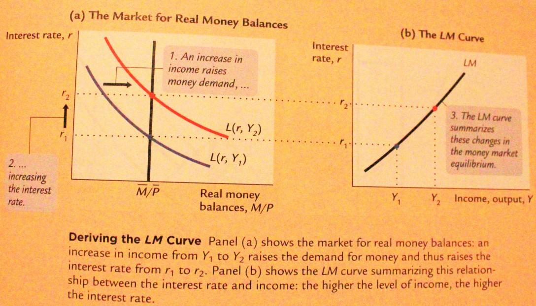 lm curve4.jpg